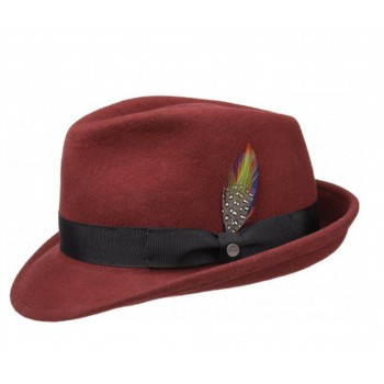 CHAPEAU HOMME ELKADER TRILBY STETSON